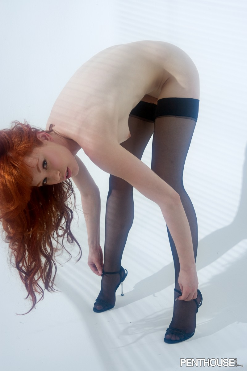 Penthouse bent over stockings